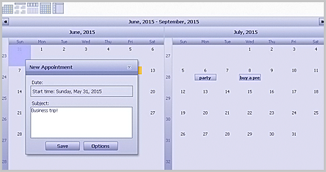 Calendar for WebForms Component: Minimal Application
