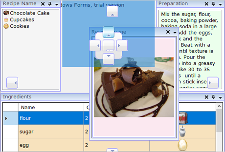 WinForms UI Layout Manager: Cook Book