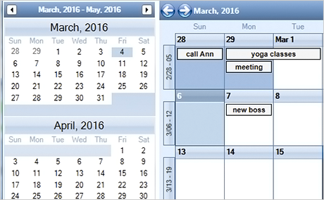 Xamarin Scheduler: Dual View