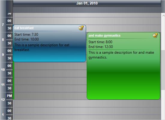 Custom Item Description Formatting in WPF Calendar